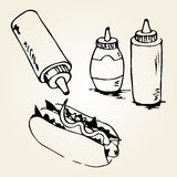 Hot Dog Hand Drawn Illustrations. Hot Dog hand drawn illustration. Fast food design elements, sketch of  hotdog with sauces in a bottles. Monochrome EPS8 vector Stock Photos