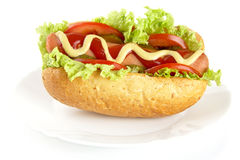 Hot dog with ingredients on plate on white background Stock Photo