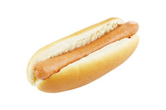 Hot dog isolated Stock Image