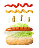 Hot dog isolato su bianco Immagine Stock