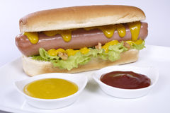 Hot dog. With ketchup and mustard Stock Images