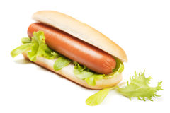 Hot dog with lettuce Royalty Free Stock Images