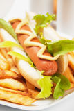 Hot dog with lettuce and french fries Stock Photo