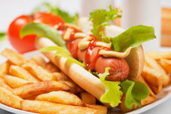 Hot dog with lettuce and french fries Royalty Free Stock Image
