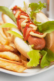 Hot dog with lettuce and french fries Royalty Free Stock Photos