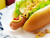 Hot dog with lettuce, gherkin and fried onions. Close up of a hot dog with lettuce, gherkin, fried onions, ketchup, mustard on a white paper napkin and plate stock images