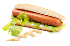 Hot dog with lettuce and mustard. On white background Stock Photos