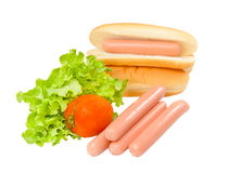 Hot dog, lettuce,tomato,and bread Stock Image