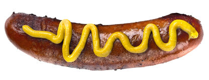 Hot Dog with Mustard royalty free stock photo