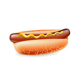 Hot dog with mustard isolated Royalty Free Stock Photo
