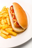 Hot dog with mustard, ketchup and fries Stock Photo
