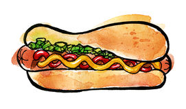 Hot Dog with mustard, ketchup and green relish. Hand drawn watercolor illustration of hot dog with mustard, ketchup and green relish. Isolated on the white stock images