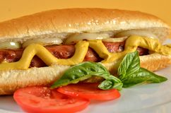 Hot Dog with Mustard and Onions Stock Image