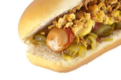 Hot Dog with onions and cucumber Royalty Free Stock Photography
