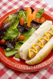 Hot Dog with salad Royalty Free Stock Image