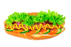 Hot dog with sausage, lettuce, tomato, cucumber, ketchup and mustard on white background. Stock Image