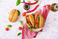 Hot dog with sausage and vegetables Royalty Free Stock Image