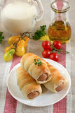 Hot-dog with sausages in a plate. Hot-dog with sausages and vegetables in a plate stock image