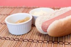 Hot dog seasoning Stock Image