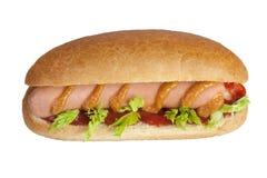 Hot dog semplice Immagini Stock Libere da Diritti