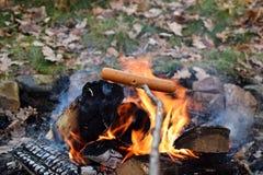 Hot dog su un bastone sopra il falò nella foresta fotografie stock libere da diritti