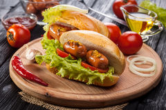 Hot dog with Tomato, lettuce, Sausage, mustard, ketchup Stock Image