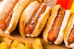 Hot dog. Traditional hot dogs on a white hot dog bun on a white background Royalty Free Stock Images