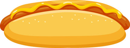 Hot dog vector Stock Photo