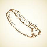 Hot Dog. Vector drawing Stock Images