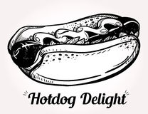 Hot dog vector illustration. Stock Photo