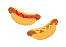 Hot Dog vector image Royalty Free Stock Image
