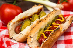Hot Dog Z Condiments lata Cookout obrazy stock