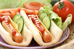 Free Hot Dogs Stock Photography - 6959772