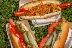 Hot dogs avec dessus un pique-nique Photos stock