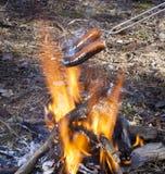 Hot-dogs brûlant sur un feu ouvert Image libre de droits