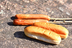 Hot dogs and bread Royalty Free Stock Images