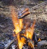 Hot dogs burning on an open fire Royalty Free Stock Image