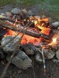 Hot-dogs de torréfaction sur le feu de camp photographie stock libre de droits