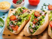 Hot dogs faits maison avec le poulet, saucisses, légume Image stock