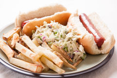 Hot dogs, fies and cole slaw Stock Images