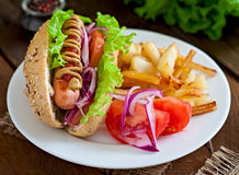 Hot Dogs with French fries on white plate. Royalty Free Stock Photos