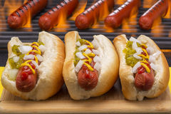 Hot Dogs Grilled  in Buns Barbecue Grill Background Royalty Free Stock Images