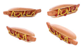 Hot Dogs isolated on white Royalty Free Stock Photo