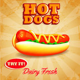 Hot dogs. Menu and banner for fast food royalty free illustration