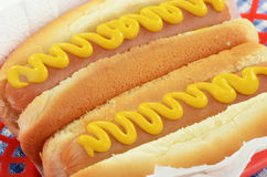 Hot dogs with mustard. In red basket closeup Royalty Free Stock Photography