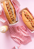 Hot dogs with mustard. Stock Photography