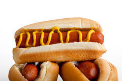 Hot dogs with mustard on a white background Stock Images
