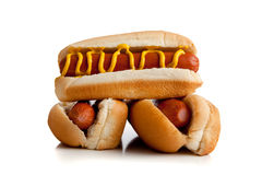 Hot dogs with mustard on a white background Royalty Free Stock Images