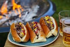 Hot-dogs par le feu de camp Images stock