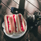 Hot dogs on a plate near sunglasses and camera. Royalty Free Stock Photo